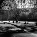 """Regents Park 1"" by jasonw1uk"