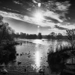 """Regents Park 3"" by jasonw1uk"