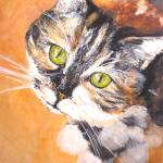 """calico kitten"" by Kevinmeredith"