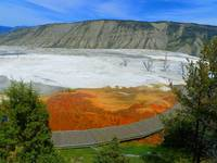 Coloured By Nature - Mammoth Hot Springs