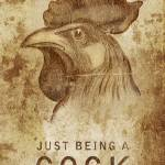 """""Just Being A Cock"""" by nordaas"