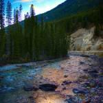 """""""Toby Creek"""" by Mottull"""