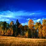 """""""Fall 2012"""" by Mottull"""