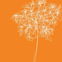 Blossom Pop Orange