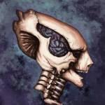 """""""Skull"""" by belitriversart"""
