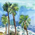 """palm trees on the cliff"" by irfa"
