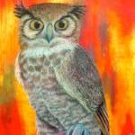 """Owl in Red"" by keima-koumoto"