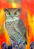Owl in Red