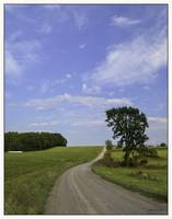 Pennsylvania Rural Road Landscape