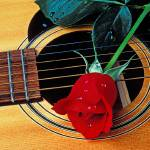 """Guitar with single red rose"" by photogarry"