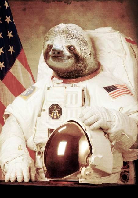 Pour parler d'autre choses.....que le HOCKEY!!! - Page 5 Astronaut-Sloth_art