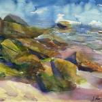 """Mossy stones during low tide"" by irfa"