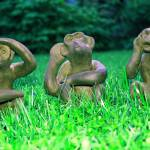 """Three Monkeys"" by aidao"