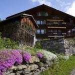 """Wengen Chalet Spring"" by davidhowell"