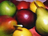 Still Life Fruit -Study