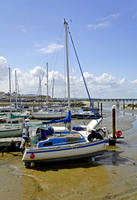 Boats in Ryde Harbour (24238-RDA)