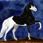 """Pooka - Miniature Horse Stallion"" by inkandbrushcreations"