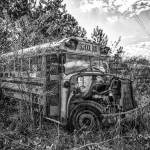 """Schoolbus Graveyeard"" by dbwalton"