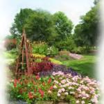 """UT Gardens"" by DuffyPhoto"