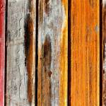 """Abstract Timber Art"" by Kathie_Nichols"