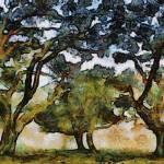 """Van Gogh Oaks"" by leapdaybride"