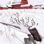 """""""Winter Barn III"""" by dkocherhans"""
