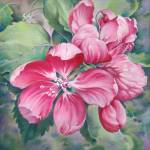 """""""Flower of Crab-apple"""" by Hannahart"""