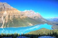 Peyto Lake, Canadian Rockies