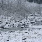 """""""Winter River    3172"""" by watersedge"""