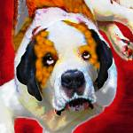 """Saint Bernard"" by LivePawsitively"