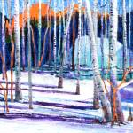 """Winter Birch"" by Pauljs"