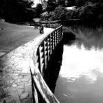 """wood curve"" by sghomedeco"