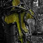 """Highgate Cemetery Cross"" by ianbroadmore"