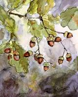 Acorns and oak Leaves Watercolor and Ink by Ginett