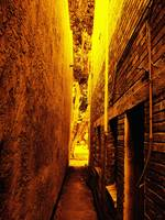 Narrow Way To The Light
