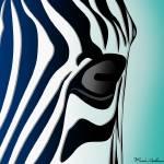 """""""zebra 3"""" by markashkenazi"""