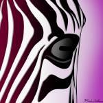 """""""zebra 4"""" by markashkenazi"""