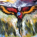 """""""Aussie parrot"""" by Pauljs"""