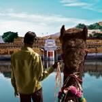 """Jaipur Dream"" by spalsgaard"