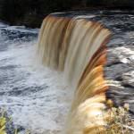 """Tannin Falls"" by NikkiLeck"