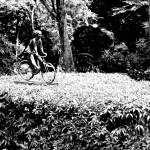 """cycling girl bw, botanic garden"" by sghomedeco"
