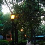 """Evening Stroll in Savannah"" by NikkiLeck"