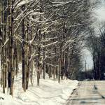"""Winter Road II"" by GBPhotography"