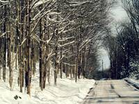 Winter Road II