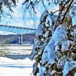 """Rhinecliff Winter II"" by GBPhotography"