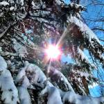 """""""Sun Snow I"""" by GBPhotography"""