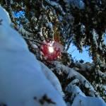 """Sun Snow III"" by GBPhotography"