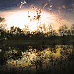 """""""Pond at forty-five minutes before sunset in Decemb"""" by fjsjr"""