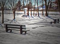 Winter at the park 9