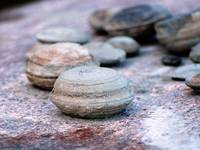 Ancient Slave River concretions